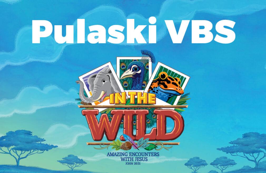 Pulaski VBS 2019