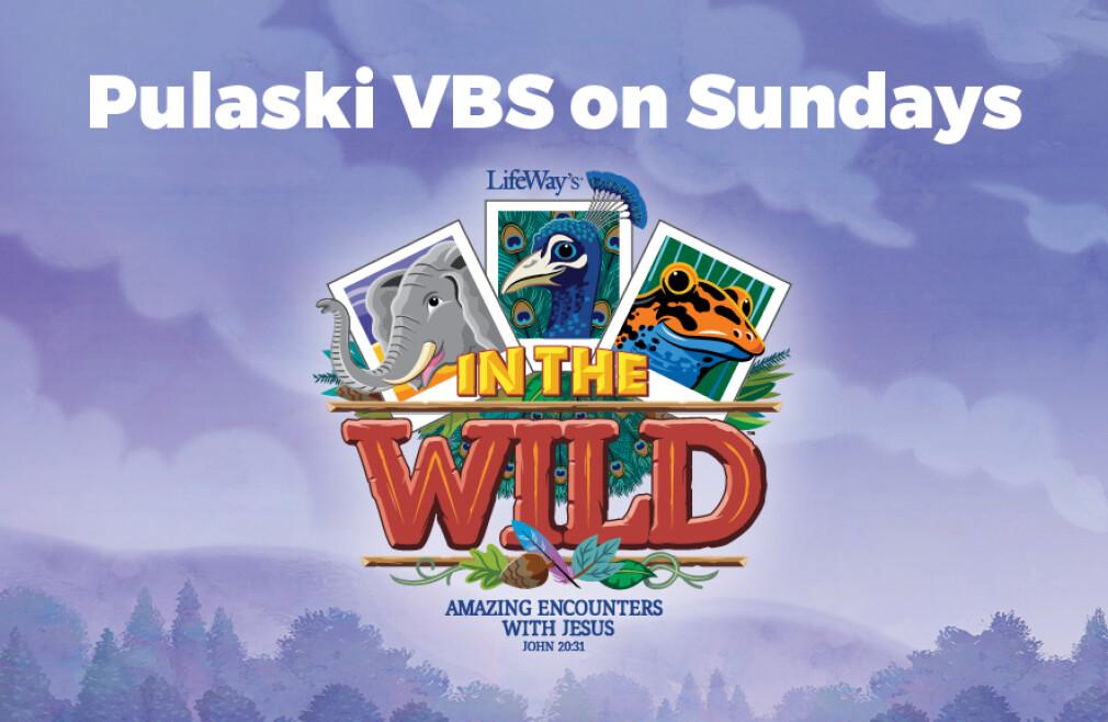 Pulaski Sunday VBS