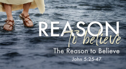 The Reason to Believe