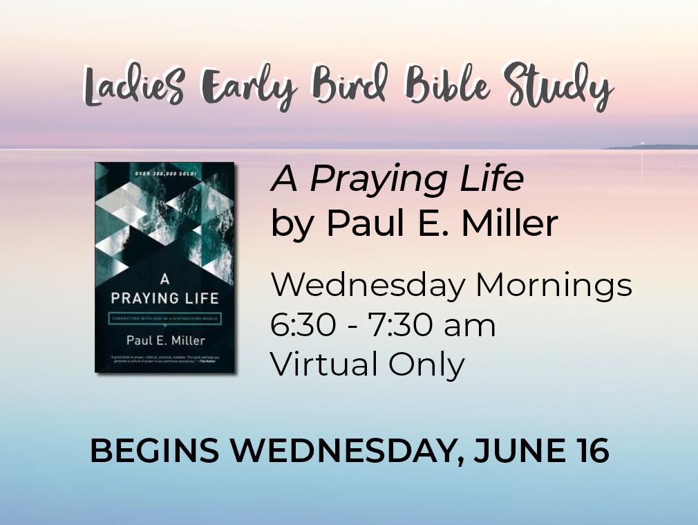 Summer 2021 Early Bird Bible Study